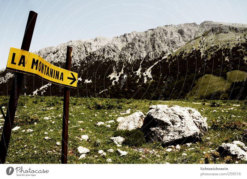 La Montanina Ausflug Abenteuer Ferne Sommer wandern Klettern Bergsteigen Natur Landschaft Pflanze Tier Wolkenloser Himmel Schönes Wetter Gras Berge u. Gebirge