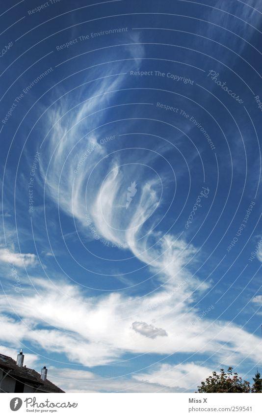 Flaschengeist Himmel blau Wolken Wetter Wind außergewöhnlich Schönes Wetter Verwirbelung