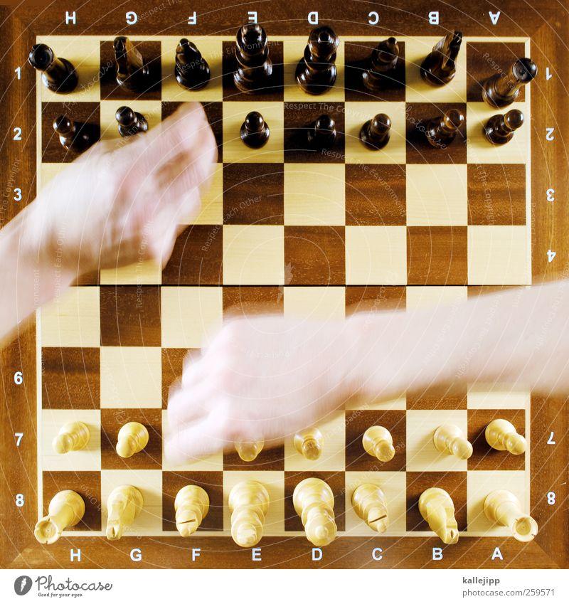 bauer sucht dame Lifestyle Stil Freizeit & Hobby Spielen Schach Schachbrett Muster planen Gegner konkurenz Brettspiel Schachfigur Beratung Plan intellektuell