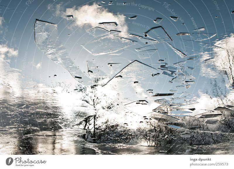 Der zerbrochene Himmel Umwelt Natur Landschaft Urelemente Wasser Wolken Winter Klima Schönes Wetter Eis Frost Pflanze Park Seeufer Moor Sumpf Teich frieren