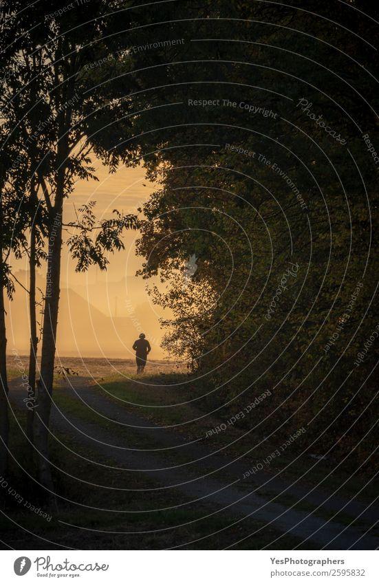 Mann läuft Silhouette bei Sonnenaufgang Lifestyle Freiheit Sport Sportler Joggen Erwachsene 1 Mensch Natur Landschaft Herbst Nebel Baum Wald sportlich Erfolg