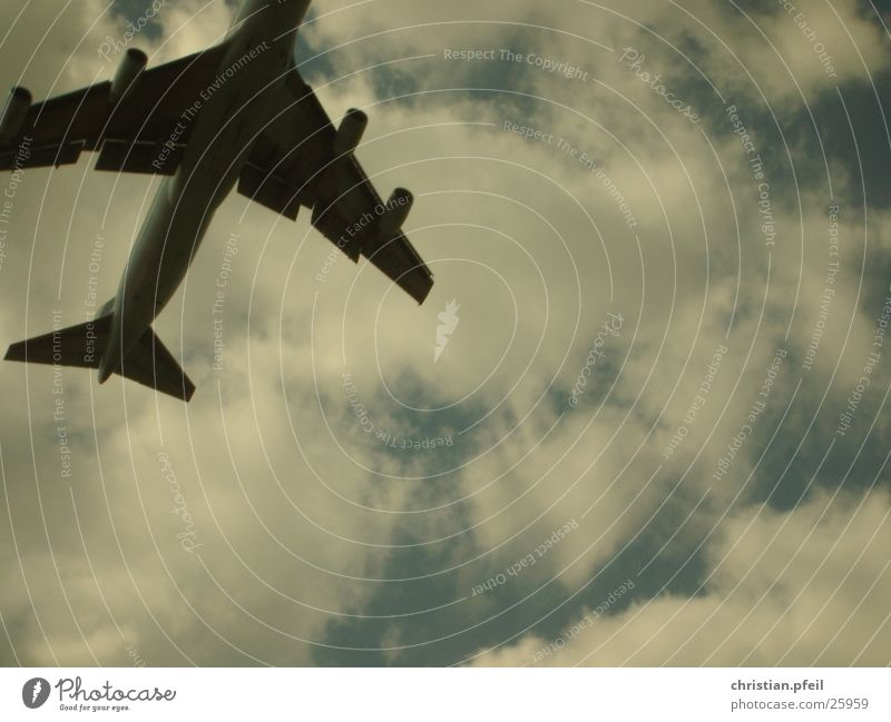 Ab in den Süden 2... Flugzeug Abheben Sommer Wolken Triebwerke Geschwindigkeit Ferne Horizont Luftverkehr Flughafen Flügel Sonne blau Schicksal