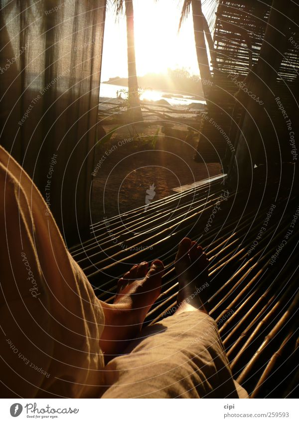 Relax Mensch Ferien & Urlaub & Reisen Strand ruhig Ferne Erholung Landschaft Glück Küste Beine Fuß Horizont Zufriedenheit Tourismus Insel Lifestyle