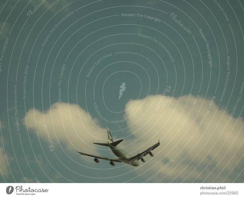 Ab in den Süden... Flugzeug Abheben Sommer Wolken Triebwerke Geschwindigkeit Ferne Horizont Luftverkehr Flughafen Flügel Sonne blau Schicksal