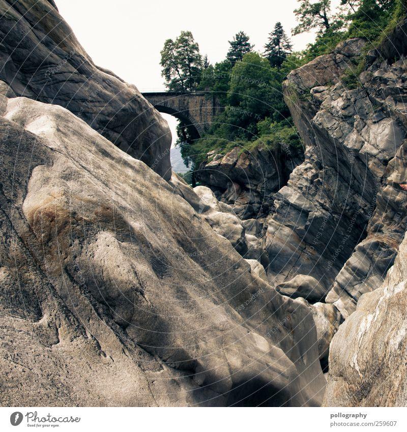 Wasserkraft!!! Natur Landschaft Wolkenloser Himmel Sommer Schönes Wetter Pflanze Baum Sträucher Blatt Grünpflanze Wildpflanze Wald Felsen Schlucht Fluss