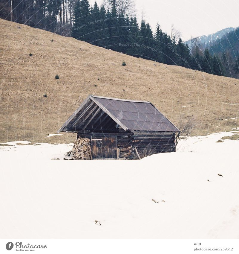 Stadel Ferien & Urlaub & Reisen Ausflug Winter Schnee Berge u. Gebirge wandern Wohnung Umwelt Natur Landschaft Wetter Wald Alpen Jachenau Hütte Gebäude Holz alt
