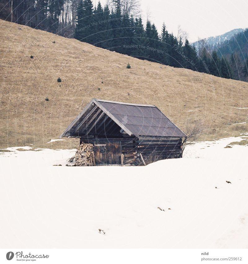 Stadel Natur alt Ferien & Urlaub & Reisen Winter Wald Umwelt Landschaft Schnee Berge u. Gebirge Holz grau Gebäude Wetter Wohnung wandern Ausflug
