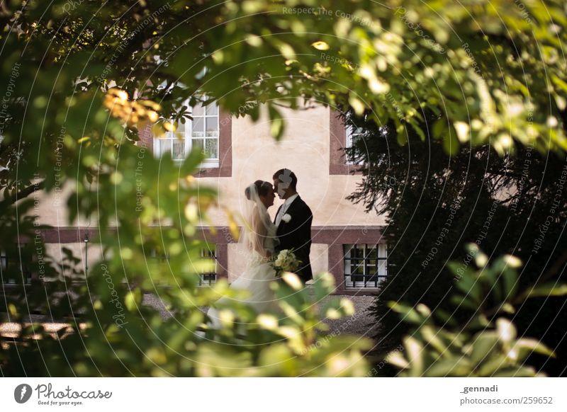 Ab jetzt gemeinsam Mensch Frau Mann Jugendliche Blatt Erwachsene Liebe Fenster Glück Paar Körper Zusammensein maskulin Sträucher Romantik 18-30 Jahre