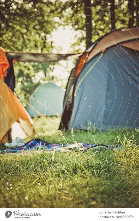 Camping im Wald Umwelt Natur Landschaft Schönes Wetter Gras Wiese Gefühle Stimmung Freude Zufriedenheit Lebensfreude Zusammensein Zelt Zeltlager Zelteingang