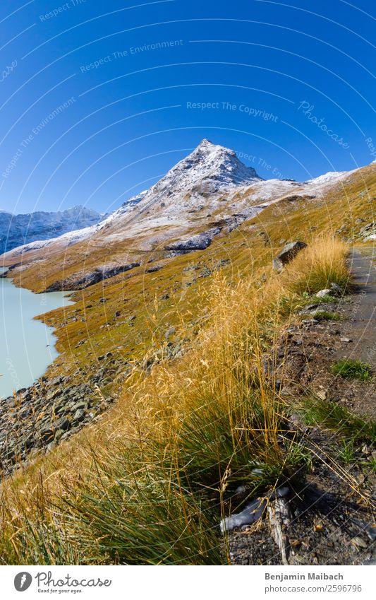 Berggipfel mit Gras und Schnee Natur Landschaft Pflanze Himmel Herbst Wetter Schönes Wetter Hügel Berge u. Gebirge Gipfel Schneebedeckte Gipfel Seeufer blau