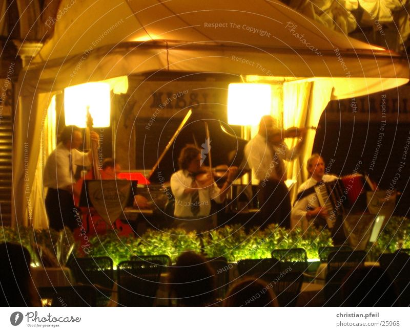 Konzert in Venedig Nacht Spielen Klassik Geige Licht Markusplatz Italien Ferien & Urlaub & Reisen grün Café Restaurant Mensch hören klassisch Stil Musiker