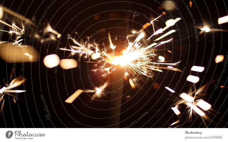 Funkenalarm (3) Wunderkerze authentisch bedrohlich fantastisch gigantisch heiß schön wild braun gelb grau schwarz weiß orange Strukturen & Formen hell explosiv