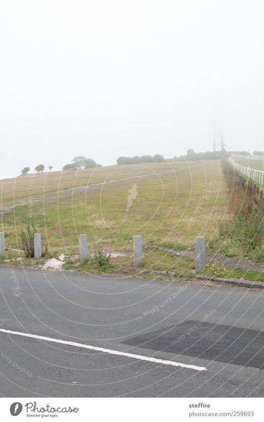 misty Baum Winter Straße Wiese Landschaft Herbst Nebel Hügel