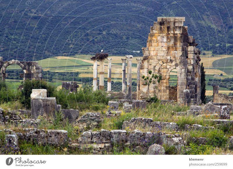 Himmel Stadt Baum Landschaft Architektur Stein Erde Denkmal historisch Ruine antik Rom Norden Weltkulturerbe monumental Marokko