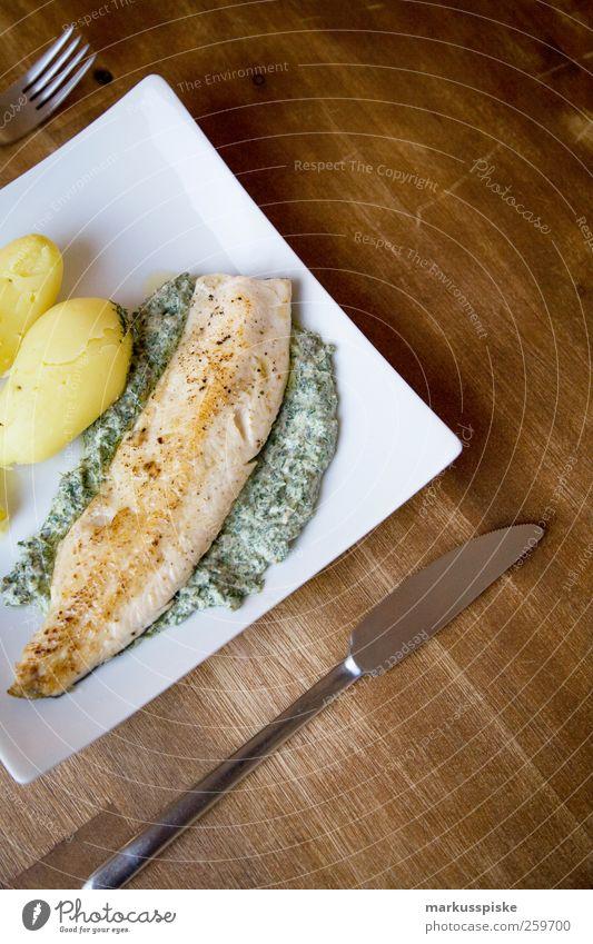 loup de mer auf kräuterbett mit kartoffeln Lebensmittel Fisch Kräuter & Gewürze Kartoffeln Wolfsbarsche Ernährung Mittagessen Abendessen Festessen