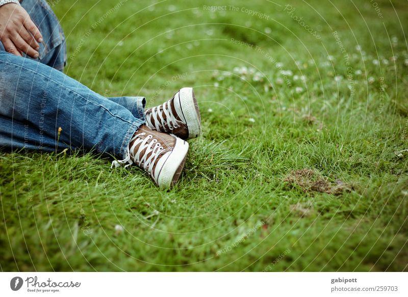 mal wieder auf der wiese liegen wäre schön! blau grün Ferien & Urlaub & Reisen Sommer Freude Erholung Wiese Landschaft Freiheit Beine Park Fuß Zufriedenheit