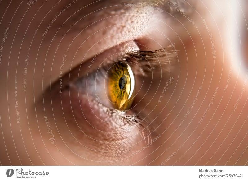 Auge einer jungen Frau schön Gesicht Gesundheitswesen Mensch Erwachsene beobachten braun schwarz weiß Farbe Regenbogenhaut schließen nach oben Pupille