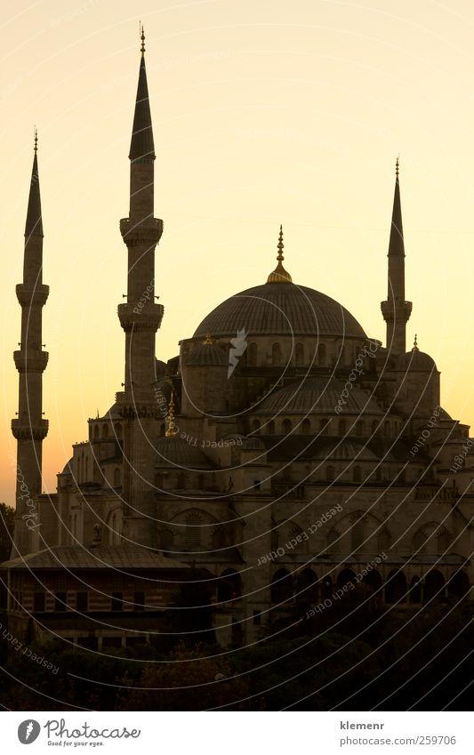 Blaue Moschee in der Sonnenuntergangsszene von Istanbul - vertikal Tourismus Kultur Himmel Gebäude Architektur Denkmal blau Religion & Glaube berühmt Truthahn