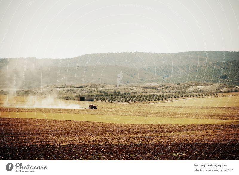 Agriculture [IX] Einsamkeit Umwelt Landschaft Arbeit & Erwerbstätigkeit braun Erde Feld dreckig trocken Landwirtschaft Ernte Ackerbau Forstwirtschaft Traktor