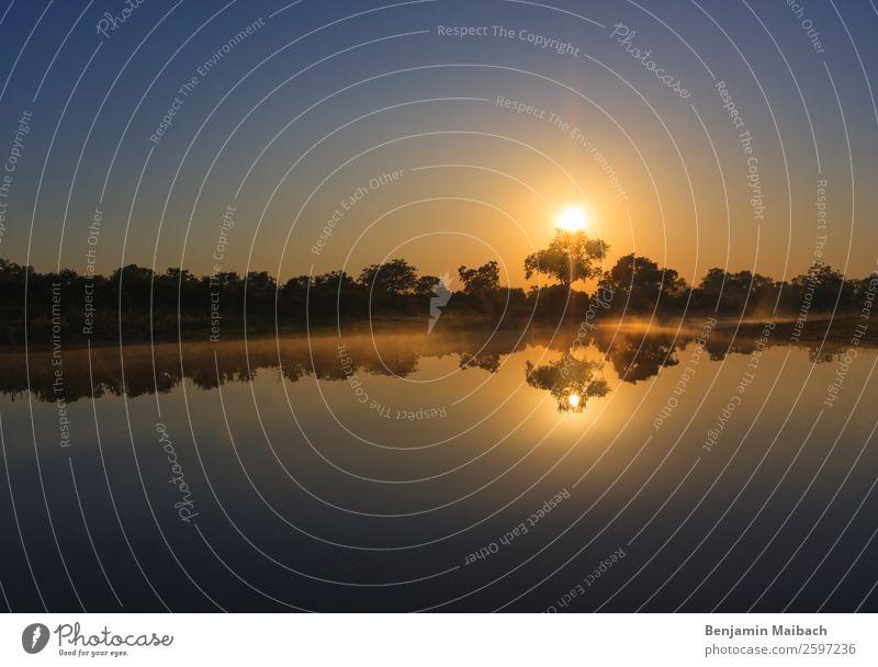 Sonnenaufgang über dem Wasser Ferien & Urlaub & Reisen Tourismus Freiheit Natur Pflanze Luft Himmel Sonnenuntergang Schönes Wetter Seeufer blau gelb gold