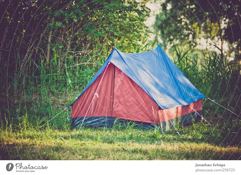 Hundehütte? Lifestyle Stil Glück sparen Ferien & Urlaub & Reisen Ausflug Abenteuer Ferne Freiheit Sommerurlaub Natur Landschaft Gras Sträucher blau grün rot