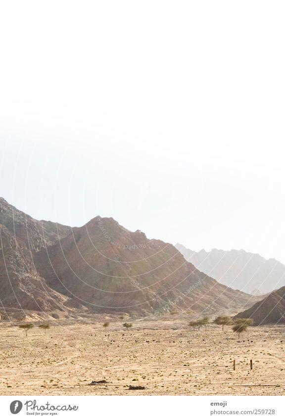 arid Natur Landschaft Sonne Sonnenlicht Wärme Dürre Hügel Felsen Berge u. Gebirge Wüste trocken gelb Sonnenstrahlen Sand Farbfoto Außenaufnahme Menschenleer
