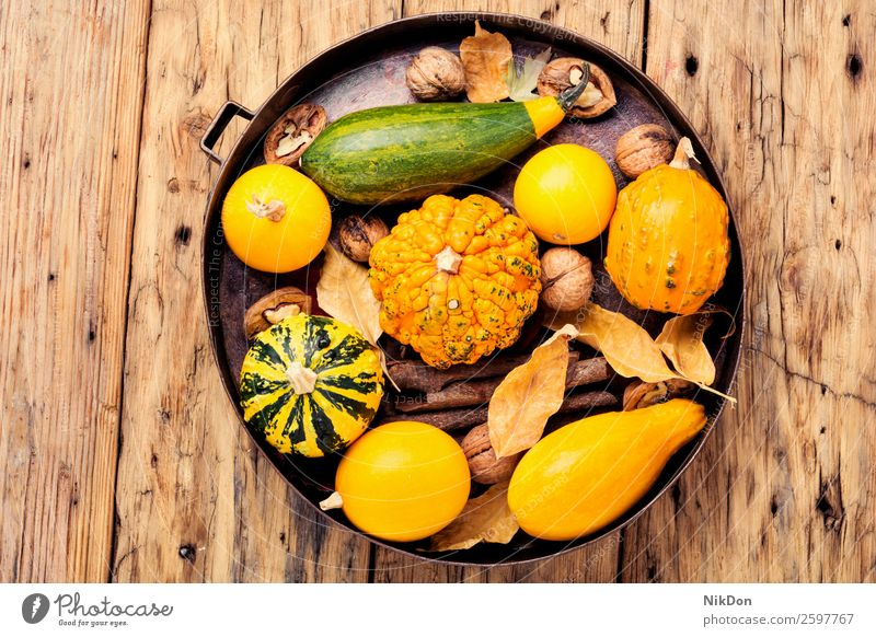 Herbstlicher Kürbis in Schale fallen Saison saisonbedingt Gemüse Blatt Herbstkürbis September Herbstkarte Herbsternte Ernte Tablett Walnussholz Samen