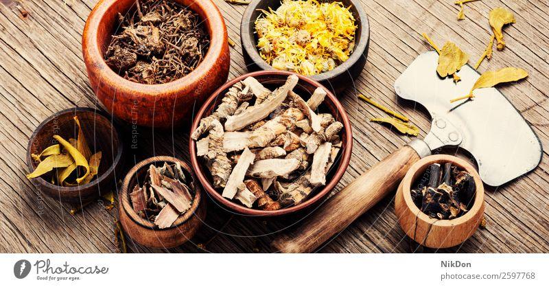 Natürliche Kräutermedizin Kraut natürlich Pflanze Behandlung Medizin Blume Natur alternativ Gesundheit medizinisch Blatt Homöopathie Aromatherapie Wellness