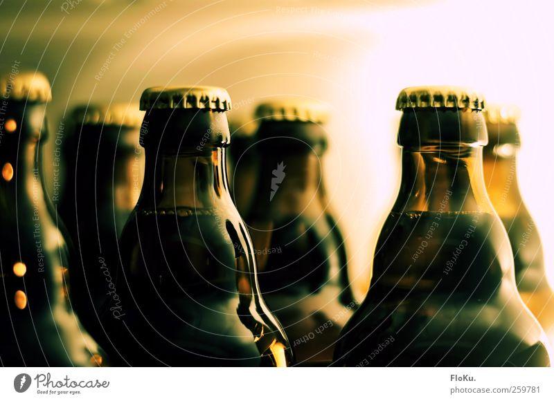 Fit fürs Wochenende Lebensmittel Getränk Bier Freude Küche Nachtleben Bar Cocktailbar Feste & Feiern kalt lecker braun gelb Laster Alkoholsucht Kühlschrank