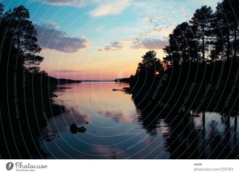 Sommerabend ruhig Freiheit Meer Umwelt Natur Himmel Wolken Horizont Baum Wald See dunkel blau Romantik Einsamkeit Finnland Skandinavien Zauberei u. Magie