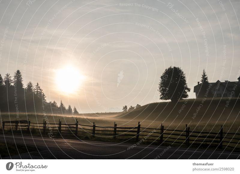 Sonnenuntergang, Berge, Bäume, Weidezaun Ferien & Urlaub & Reisen Ausflug Ferne Berge u. Gebirge wandern Natur Landschaft Himmel Horizont Sonnenaufgang Herbst