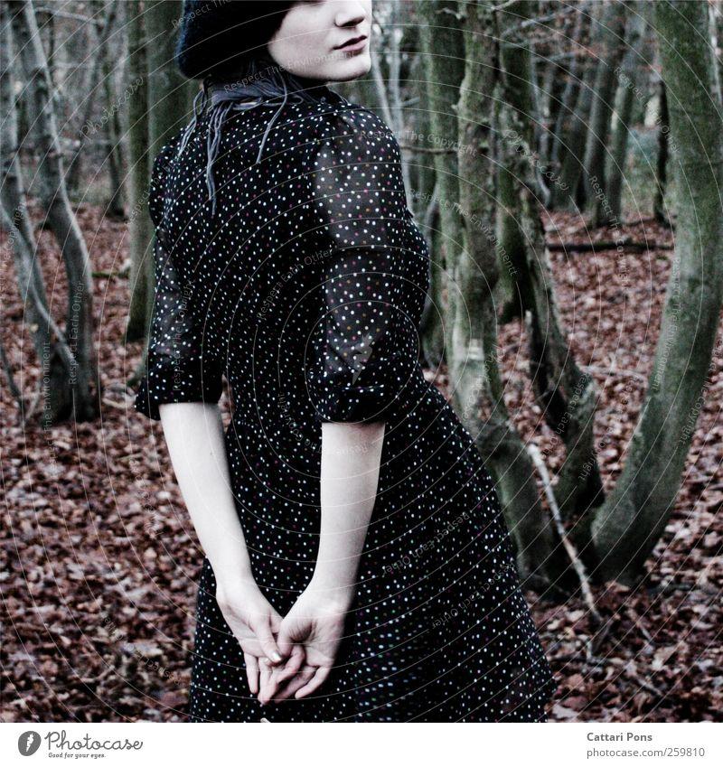 Autumns Lover Mensch Frau Natur Jugendliche schön Baum Blatt Erwachsene Wald Herbst Umwelt feminin Spielen ästhetisch stehen einzigartig