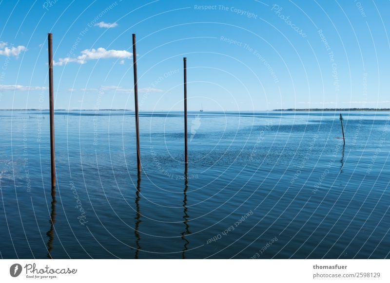 Meer mit Stangen Himmel Ferien & Urlaub & Reisen Natur Sommer Wasser Sonne ruhig Ferne Freiheit Horizont Luft Insel Perspektive Schönes Wetter Klima