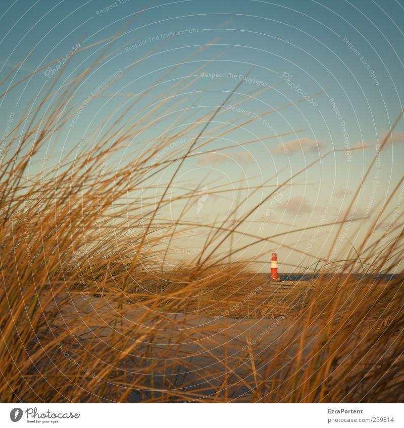 little one Himmel Natur blau Ferien & Urlaub & Reisen Sommer rot Meer Landschaft Wolken Winter Strand Erholung gelb Herbst Gras Küste