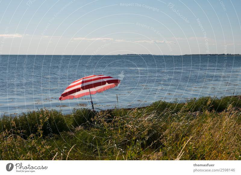Strand, Sonnenschirm, Meer Ferien & Urlaub & Reisen Ausflug Sommer Sommerurlaub Sonnenbad Insel Natur Landschaft Sand Luft Wasser Wolkenloser Himmel Horizont