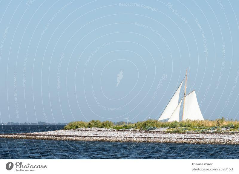 Insel mit Segel Ferien & Urlaub & Reisen Natur Sommer Landschaft Sonne Meer Ferne Strand Küste Tourismus Freiheit Ausflug Horizont Wellen Abenteuer