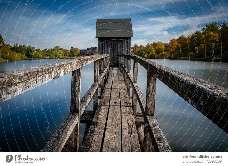 Alter Steg am See Natur Landschaft Pflanze Luft Wasser Himmel Wolken Herbst Wetter Schönes Wetter Baum Sträucher Wald Berge u. Gebirge Harz Seeufer Hahnenklee