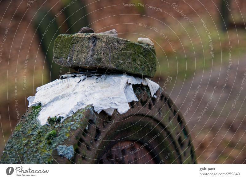 Zukunft braucht Erinnerung Friedhof Grabstein Denkmal Zettel Zeichen Schriftzeichen Ornament dunkel historisch braun Güte Menschlichkeit Solidarität Vorsicht