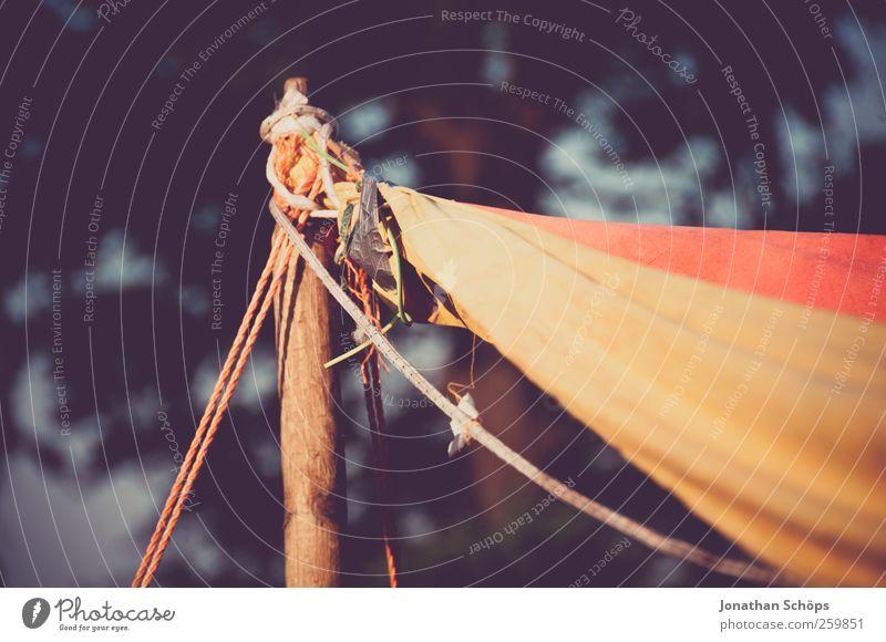 Zeltmast I Natur rot Ferne gelb Umwelt Freiheit Stil braun Park wild Lifestyle Schönes Wetter Seil Schnur Abenteuer Stoff