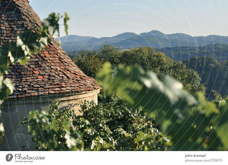 Wein doch! blau grün rot Berge u. Gebirge Architektur Herbst Gebäude Wachstum Idylle Lebensfreude Romantik Dach Schutz historisch Hügel