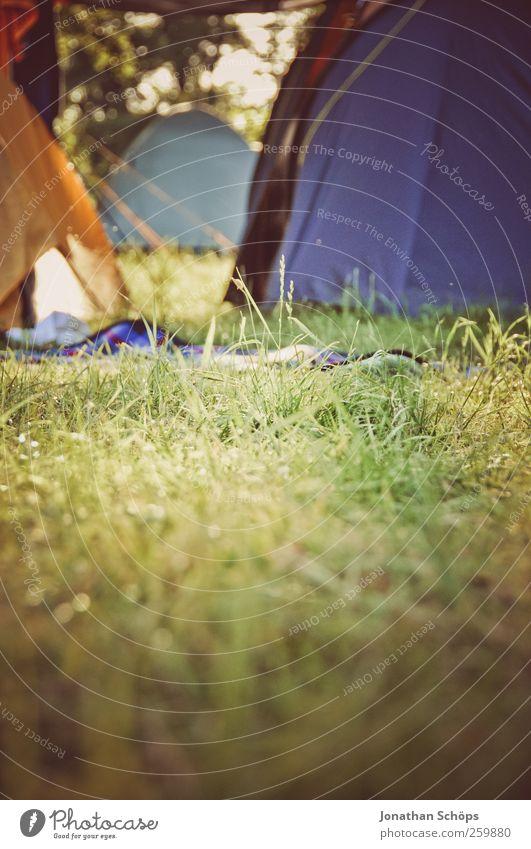 vor den Zelten Lifestyle Ferien & Urlaub & Reisen Ausflug Abenteuer Ferne Freiheit Sommerurlaub Umwelt Natur Gras Wiese Lebensfreude Zeltlager Außenaufnahme