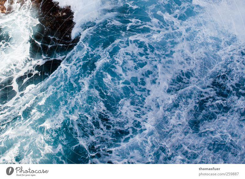 Wildwasser Natur blau Wasser Ferien & Urlaub & Reisen Meer Gefühle Bewegung Küste Wellen Wind Angst wild Abenteuer Insel gefährlich bedrohlich