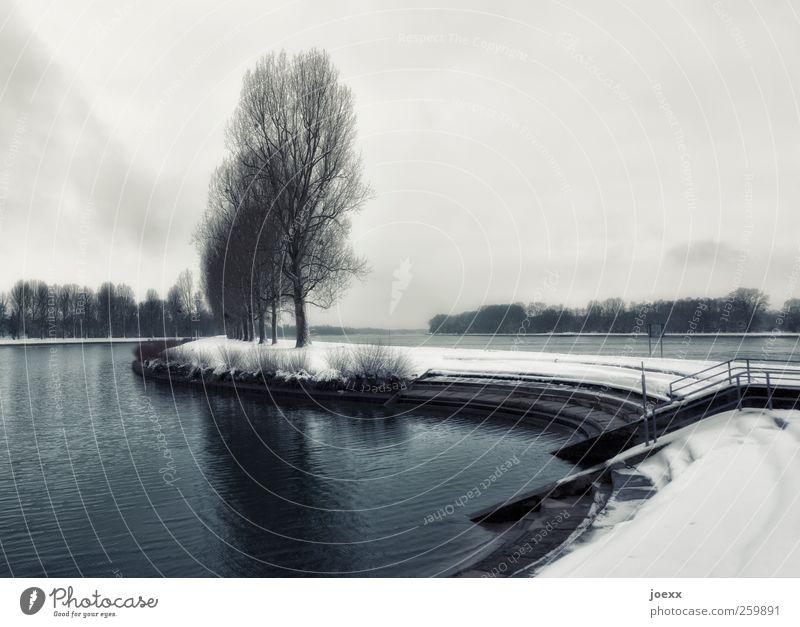 Wasserweg Landschaft Himmel Wolken Horizont Winter Baum Flussufer alt dunkel blau grau schwarz weiß Stimmung ruhig Traurigkeit kalt Wege & Pfade Farbfoto