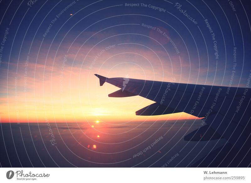 Mama Stern blau gelb oben Metall gold Flugzeug Luftverkehr Technik & Technologie Pilot
