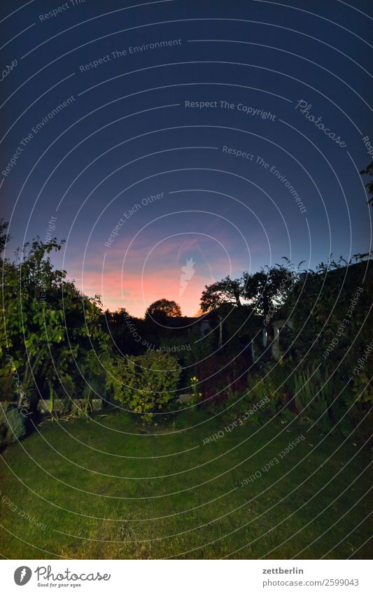 Dämmerung im Gärtchen Abend dunkel Farbe Farbenspiel Feierabend Himmel Himmel (Jenseits) Hintergrundbild Menschenleer Romantik Sonnenuntergang spektral
