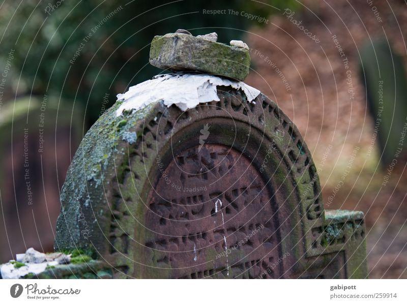 Zukunft braucht Erinnerung II alt Tod kalt dunkel Stein Traurigkeit Religion & Glaube braun Schriftzeichen Hoffnung trist Trauer Vergänglichkeit Frieden