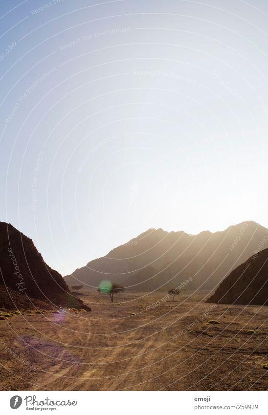 zu dritt Himmel Baum Sommer Einsamkeit Berge u. Gebirge Sand Wärme Felsen Wüste trocken Dürre karg
