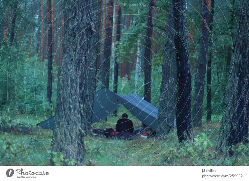 sleeping in the woods Mensch Natur grün Ferien & Urlaub & Reisen ruhig Ferne Wald Wiese Landschaft Freiheit Freizeit & Hobby Ausflug Abenteuer ästhetisch