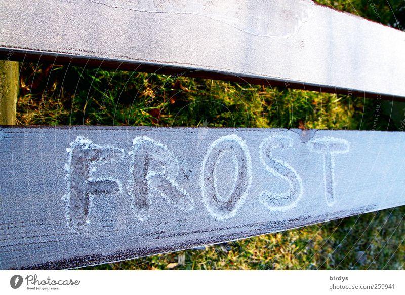 Jetzt wird`s eisig Winter Klima Eis Frost Park Schriftzeichen ästhetisch hell kalt Perspektive Raureif Handschrift 2 Buchstaben Wort Holzbrett gefroren