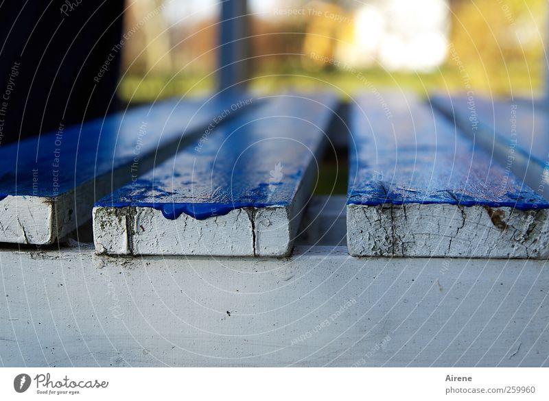 blau gemacht Renovieren Möbel Beruf Anstreicher Handwerk Holz streichen alt Flüssigkeit glänzend weiß Energie Farbe Freude Lebensfreude Dilettantismus